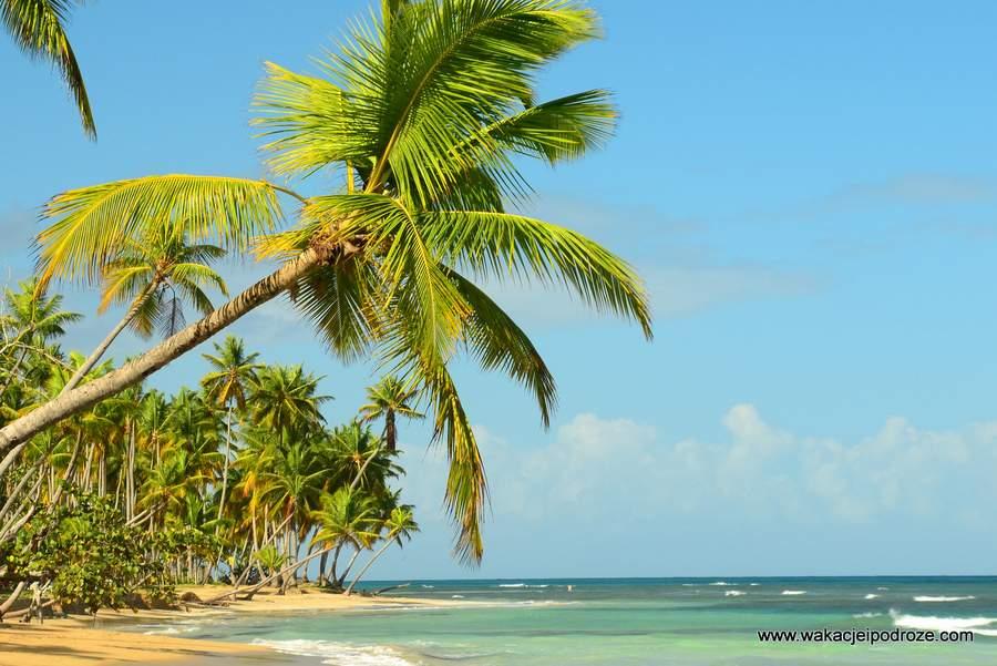 Wakacje na Dominikanie - tropikalne plaże