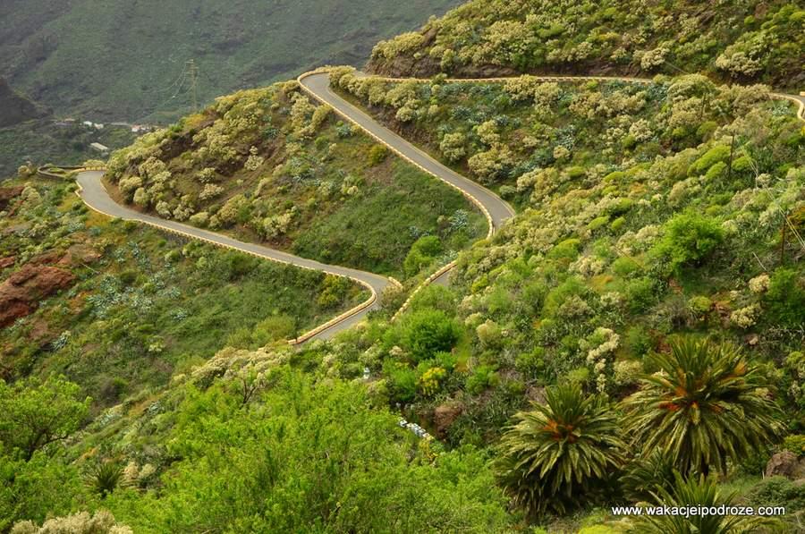Tenerife - Masca