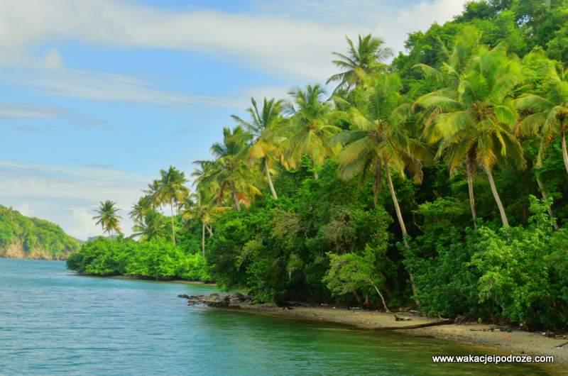 Bezludna, tropikalna wyspa