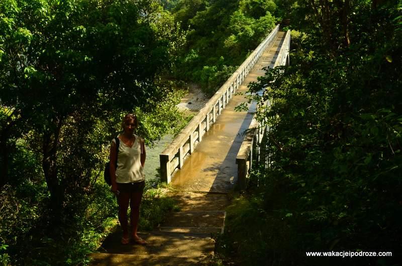 Tajemniczy most donikąd