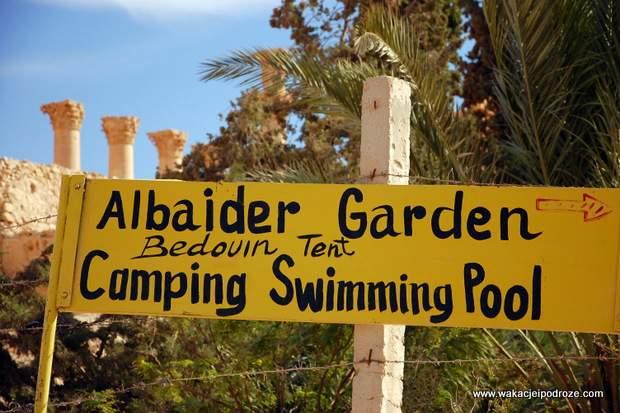 Camping w Palmyrze