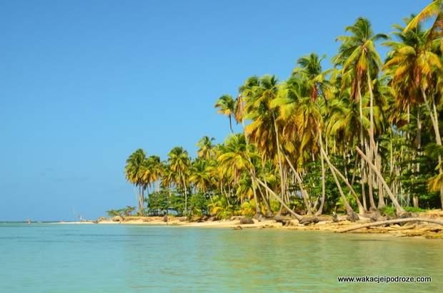 Dominikana plaża Playa Bonita