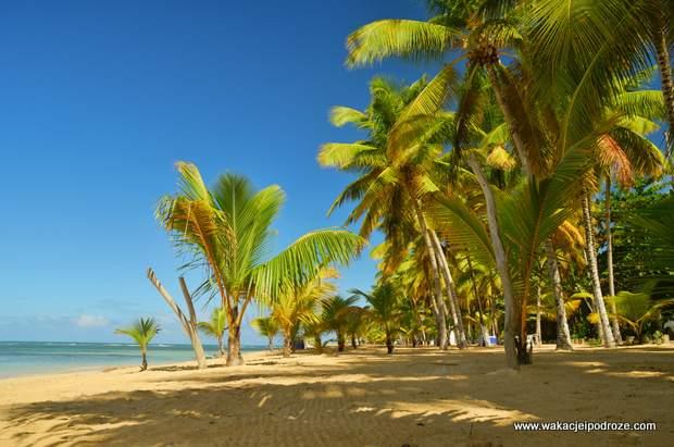 Plaża w Las Ballenas