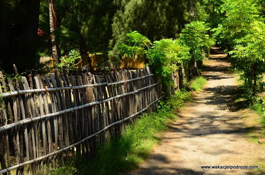 indonezja-gili-meno