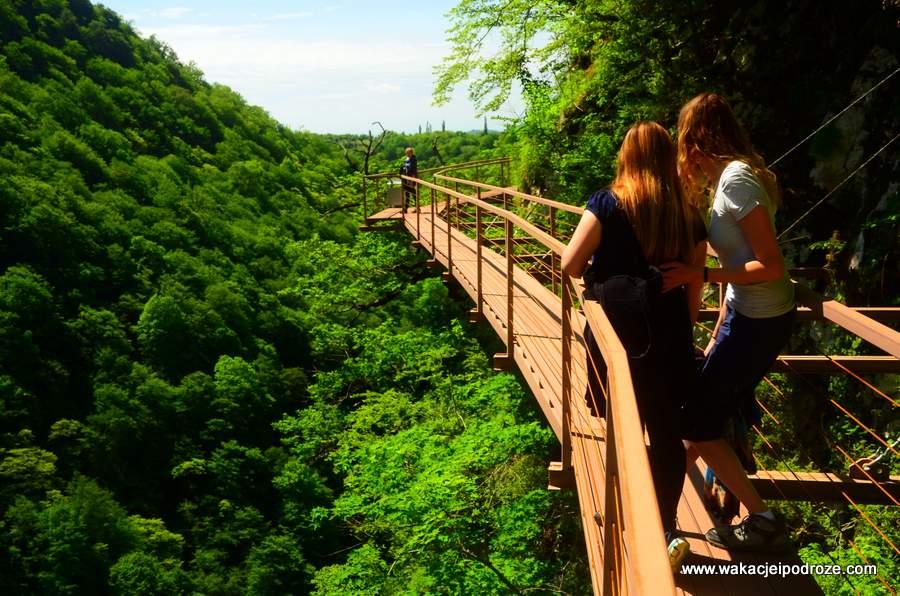 Canyon Okatse - trasa wiedzie mostkiem rozwieszonym nad przepaścią
