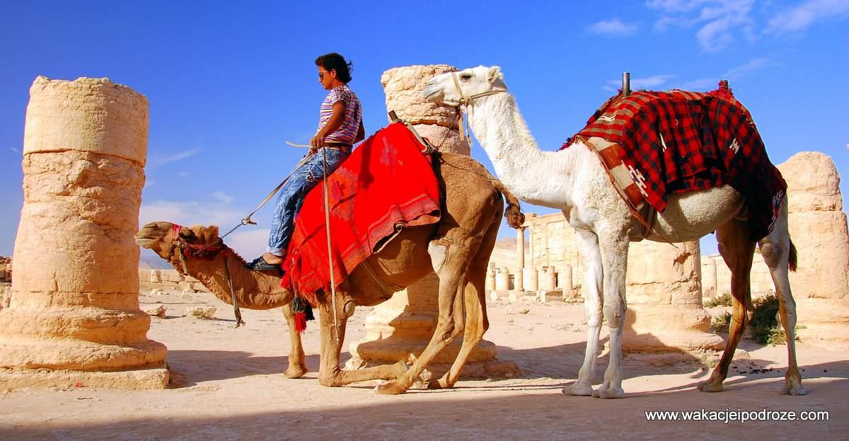 Całkiem Bliski Wschód
