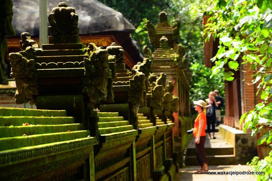 bali-monkey-forest