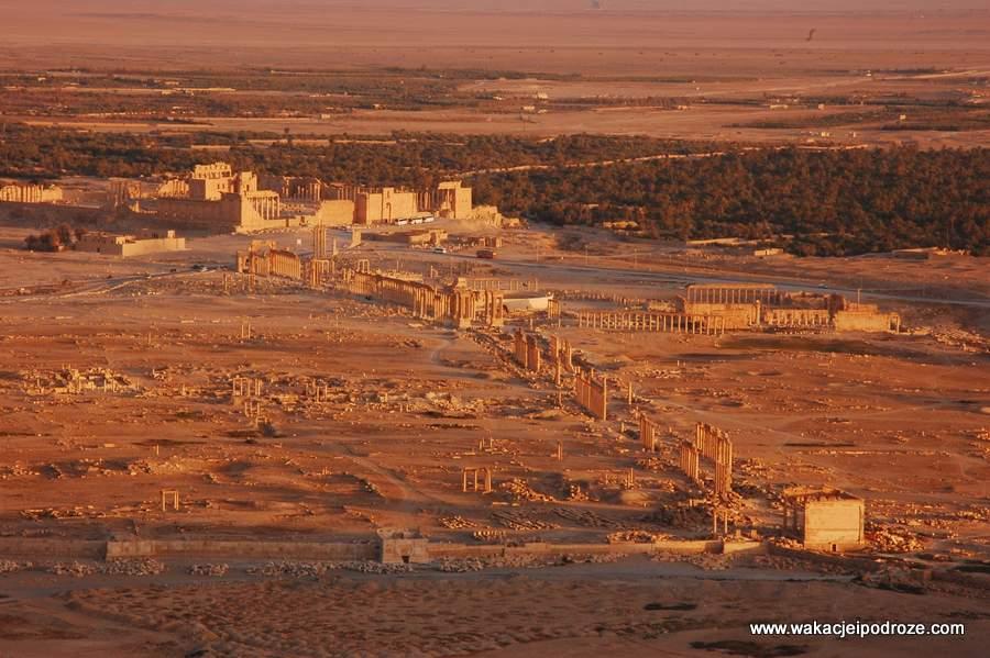 syria-palmyra (2)